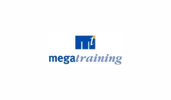 Megatraining